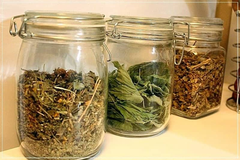 сухие травы в банках