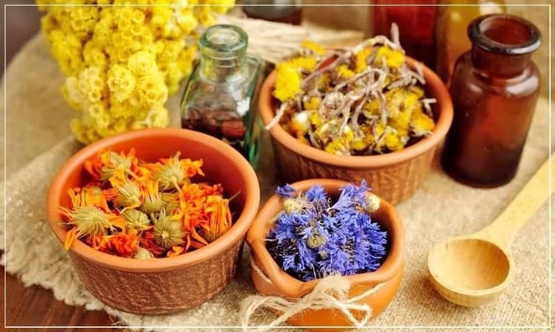 заготовка цветков