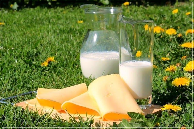 молоко в графине на траве