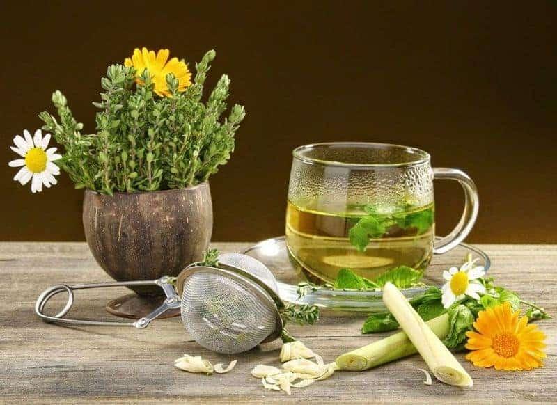 травы и чашка