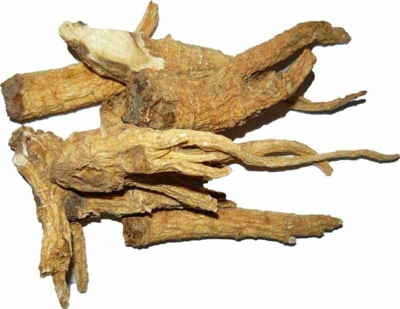 корень женьшеня