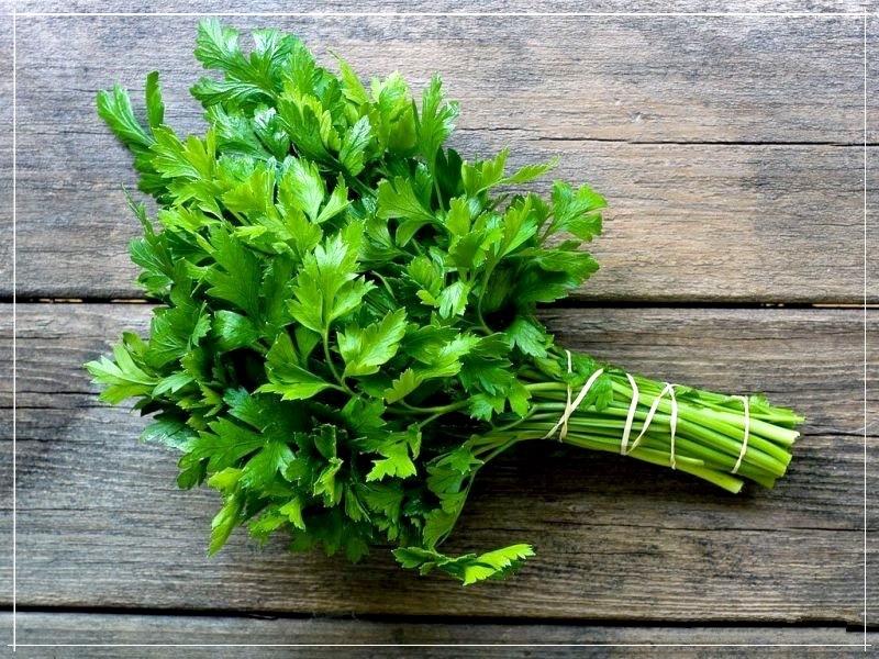 пучок свежей зелени