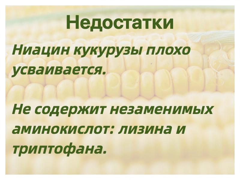 недостатки кукурузы